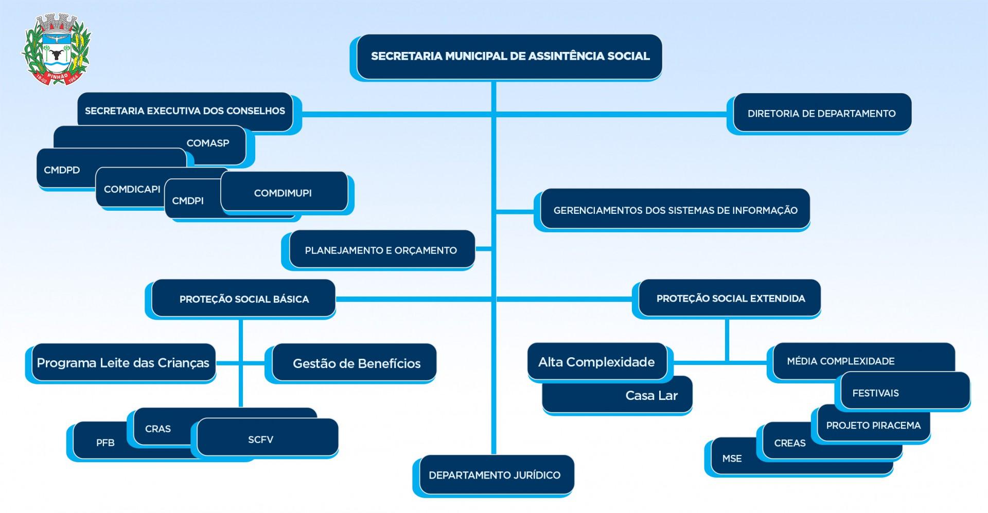 organograma-assistencia-social
